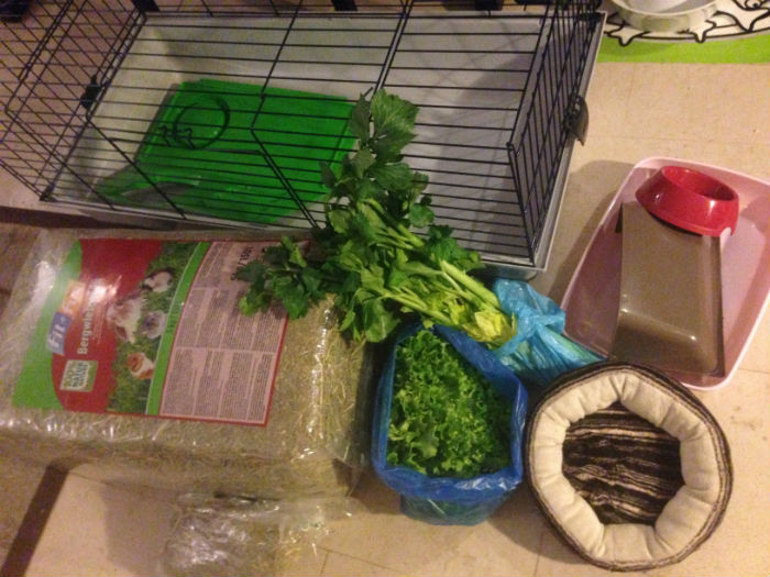 dons pour lapins_Samia