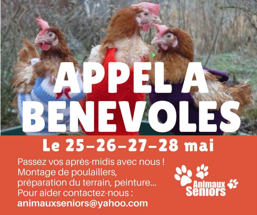 appel à bénévoles sauvetage poules