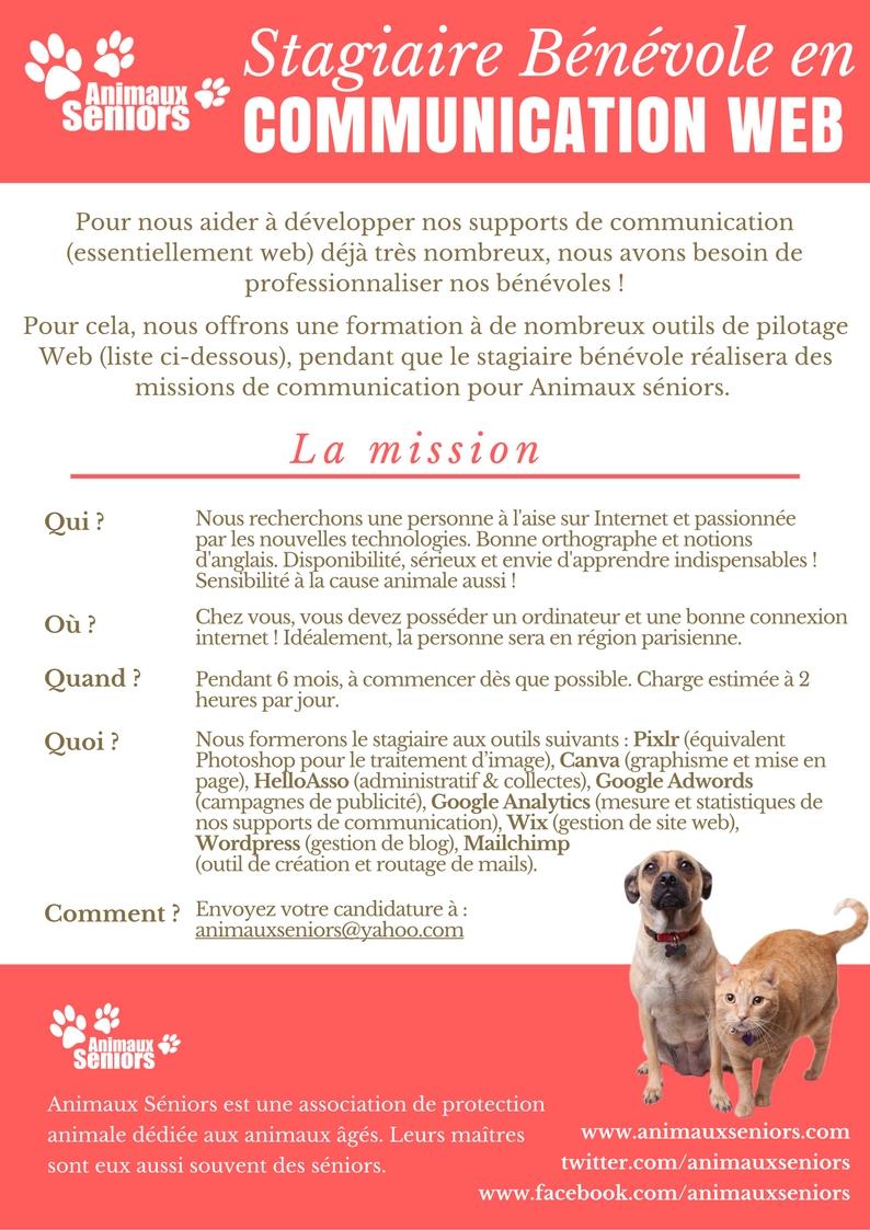 RECHERCHONS Stagiaire Bénévole en COMMUNICATION WEB