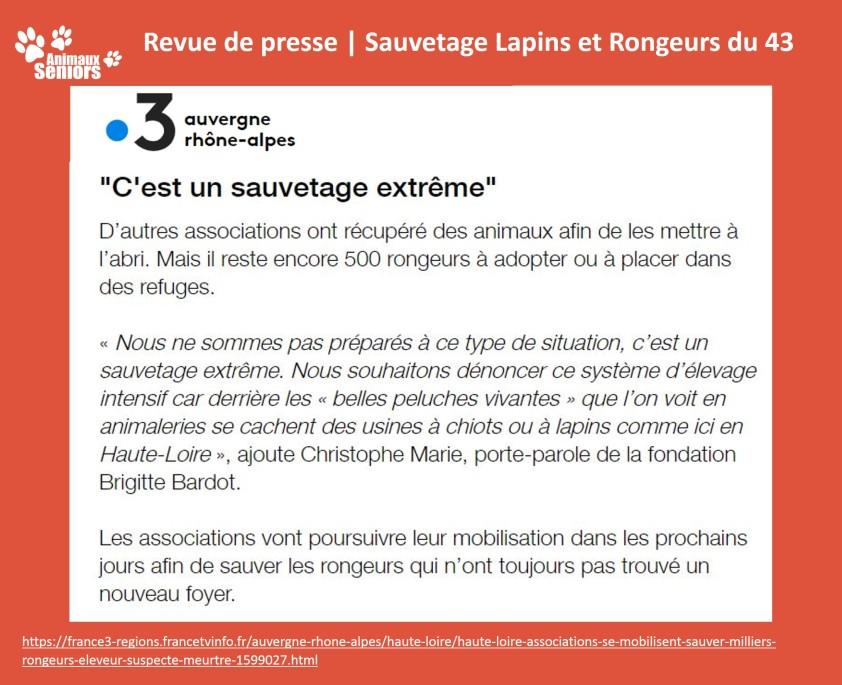 Lapins_revue de presse3