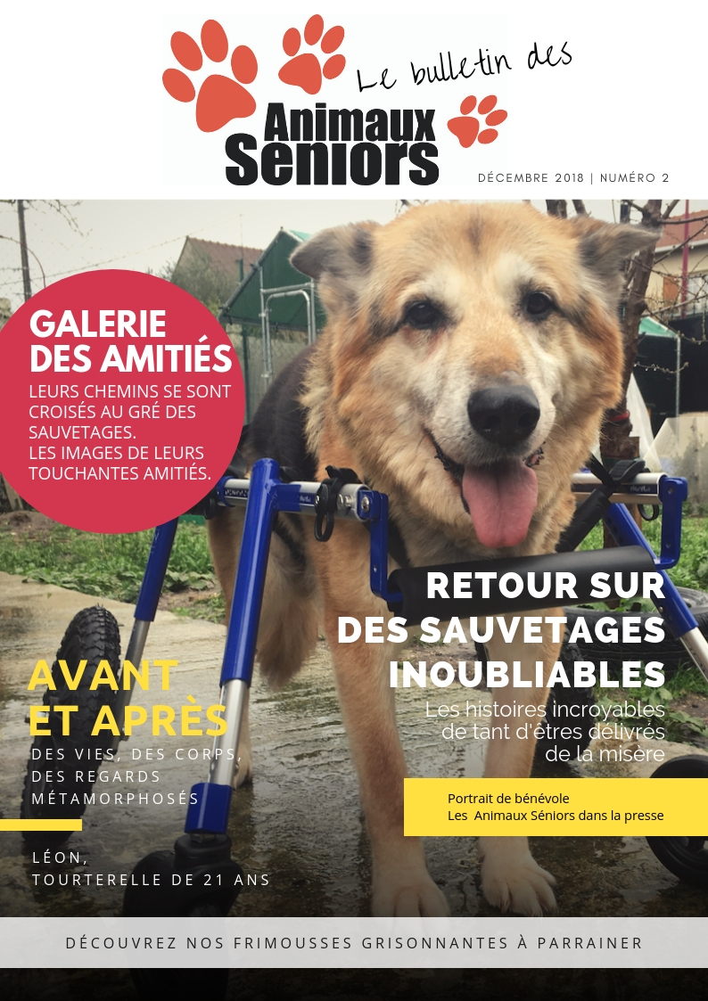Le Bulletin des Animaux Séniors - 2018