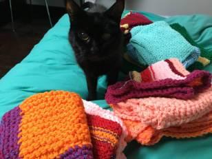 Brownie fait la pose parmi les petites couvertures tricotées main par Anne-Marie et son petit fils. Merci !